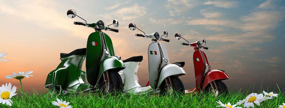 Moped Mofa Roller Kennzeichen Online Bestellen